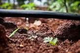 Installation de Systèmes d'Irrigation - Côte d'Ivoire