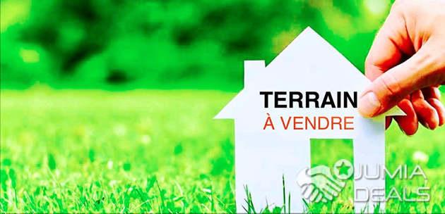 Terrain De 12 Hectares En Vente A Pk36 Douala Prix M2 Bassa
