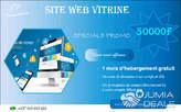 Création site web vitrine - Cameroun
