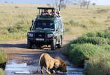 Uganda Safari Holidays - Kenya