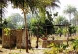 Terrain 4Ha à Diouloulou - Sénégal